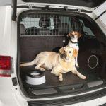 Pasje mreže za vašo in ljubljenčkovo varnost